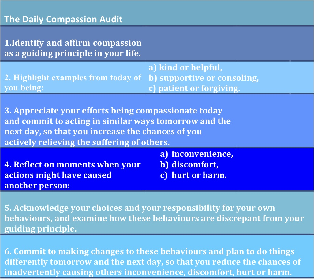 The Daily Compassion Auditgraphic